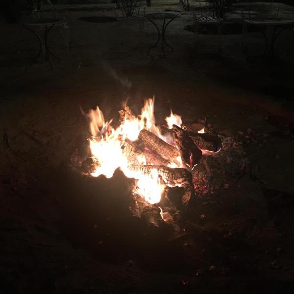 bonfire-anshu.jpg